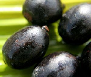 Noix d'ungurahua à l'origine de l'actif de soin naturel de la marque capillaire Rahua