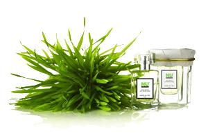 Honoré des Prés first natural perfume collection
